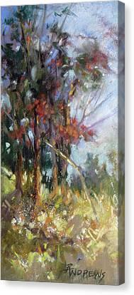 Softly, Softly Canvas Print by Rae Andrews