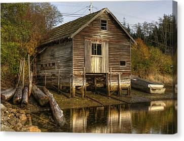 Sointula Boat Shed Canvas Print by Darryl Luscombe