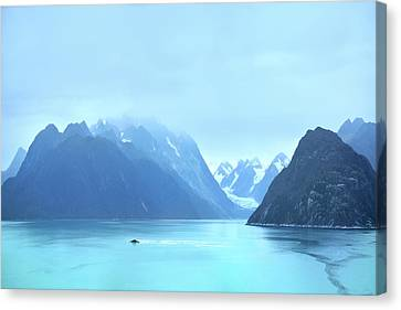 Canvas Print featuring the photograph Sojourn by John Poon