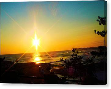 Sokcho 1 Canvas Print by Michael C Crane