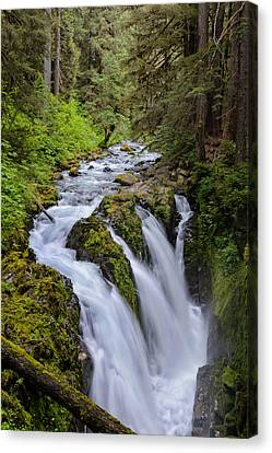 Sol Duc Canvas Print by Doug Oglesby