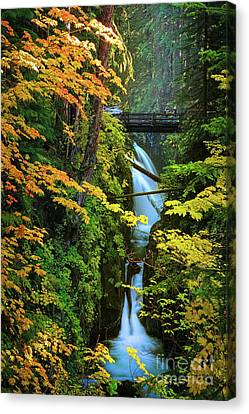 Sol Duc Falls In Autumn Canvas Print by Inge Johnsson