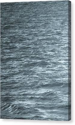 Wavy Canvas Print - Solacium by Wim Lanclus