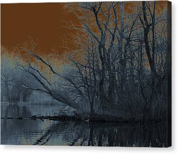 Solarization Canvas Print