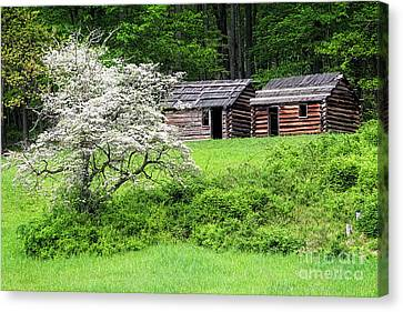 Log Cabins Canvas Print - Soldier Huts  by George Oze