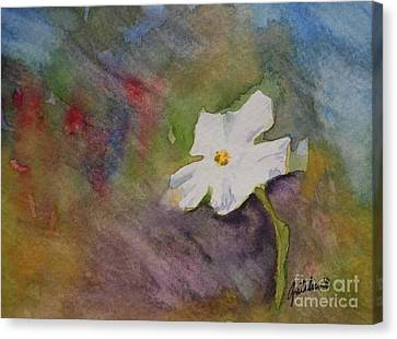 Solitary Flower Canvas Print by Gretchen Bjornson