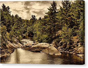 Solitary Wilderness Canvas Print
