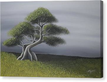 Solitude Canvas Print by Edwin Alverio
