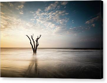 Solitude Canvas Print by Ivo Kerssemakers