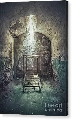 Solitude Of Confinement Canvas Print by Evelina Kremsdorf