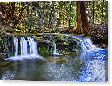 Canvas Print featuring the photograph Solitude by Skip Tribby