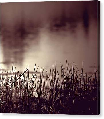 Canvas Print featuring the photograph Solitude by Trish Mistric