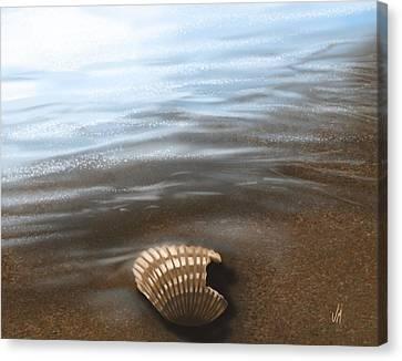 Sea Shell Digital Art Canvas Print - Solitude by Veronica Minozzi