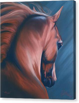 Canvas Print - Solo by Kim McElroy