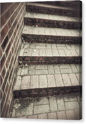 Some Brick Steps Canvas Print by Tom Gowanlock