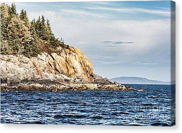 Canvas Print featuring the photograph Somes Sound by Anthony Baatz