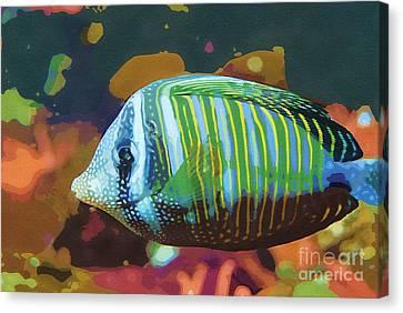 Something Fishy Canvas Print by Deborah MacQuarrie-Selib