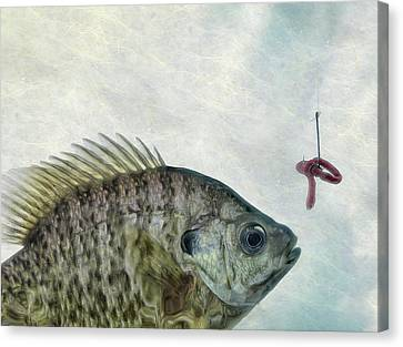 Canvas Print featuring the photograph Something Fishy by Mark Fuller