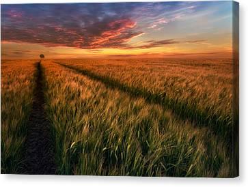Somewhere At Sunset Canvas Print by Piotr Krol (bax)