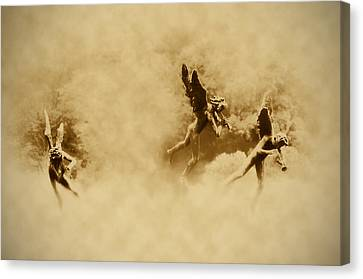 Song Of The Angels In Sepia Canvas Print