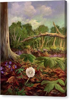 Song Of The Mayapple Canvas Print by Randy Burns