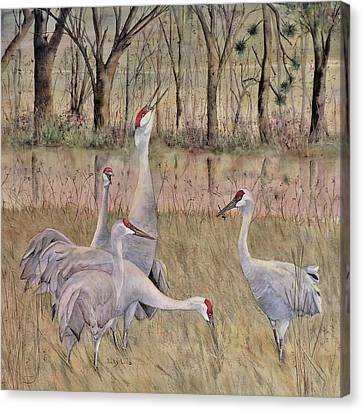 Song Of The Sandhill Canvas Print by Vicky Lilla