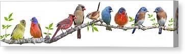 Songbirds On A Leafy Branch Canvas Print