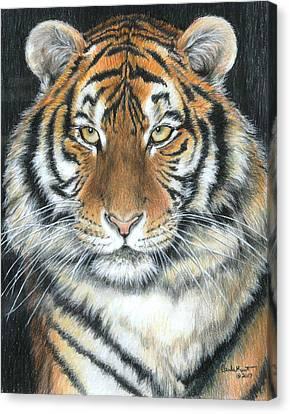 Songha Canvas Print by Carla Kurt