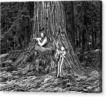 Canvas Print featuring the photograph Songs In The Woods by Ben Upham