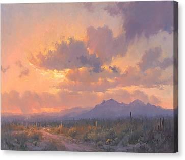 Sonoran Blush Canvas Print
