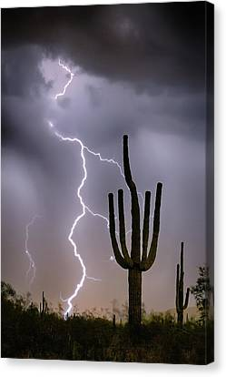 Canvas Print featuring the photograph Sonoran Desert Monsoon Storming by James BO Insogna