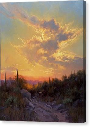 Sonoran Glow Canvas Print by Becky Joy