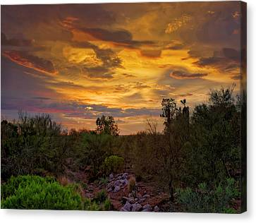 Canvas Print featuring the photograph Sonoran Sonata H01 by Mark Myhaver