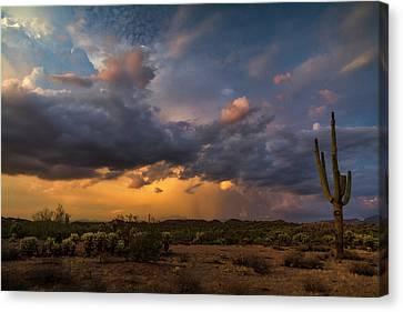 Sonoran Sunset Rain  Canvas Print by Saija Lehtonen