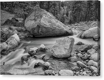 Soothing Colorado Monochrome Wilderness Canvas Print by James BO Insogna