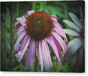 Canvas Print featuring the photograph Sorrow by Karen Stahlros