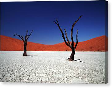 Deserted Canvas Print - Sossusvlei In Namib Desert, Namibia by Igor Bilic Photography