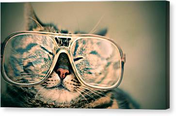 Sosy Cat With Glasses Canvas Print