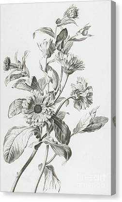 Souci Des Jardins Canvas Print by Gerard van Spaendonck