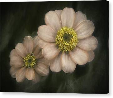 Soul Mates Canvas Print by Scott Norris