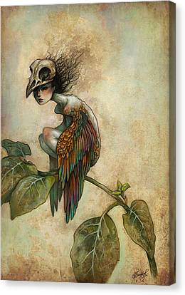 Feathers Canvas Print - Soul Of A Bird by Caroline Jamhour