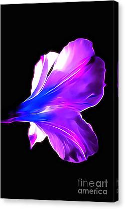 Flora Canvas Print - Soul Shine by Krissy Katsimbras