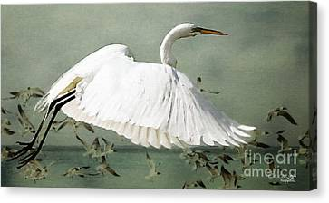 Souls Take Flight ... Canvas Print by Chris Armytage