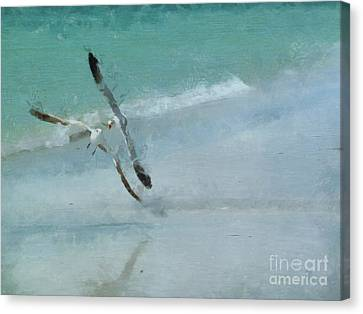 Canvas Print featuring the photograph Sound Of Seagulls by Claire Bull