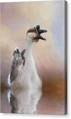 Canvas Print featuring the photograph Sounder by Robin-Lee Vieira