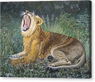 Growling Canvas Print - Sounds Of Africa  by Caroline Street