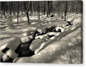 Canvas Print featuring the photograph Sourland Mountains 4 by Steven Richman
