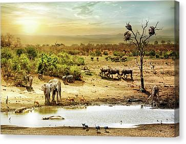 South African Safari Wildlife Fantasy Scene Canvas Print by Susan Schmitz