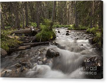 South Boulder River Long Exposure Canvas Print by Carolyn Brown