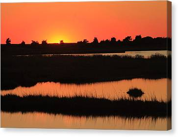 South Cape Beach Marshes At Sunset Canvas Print by John Burk